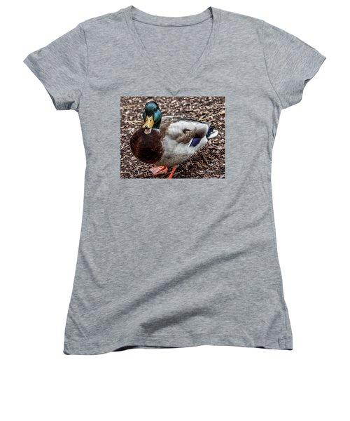 Women's V-Neck T-Shirt (Junior Cut) featuring the photograph Mallard Duck by Joann Copeland-Paul