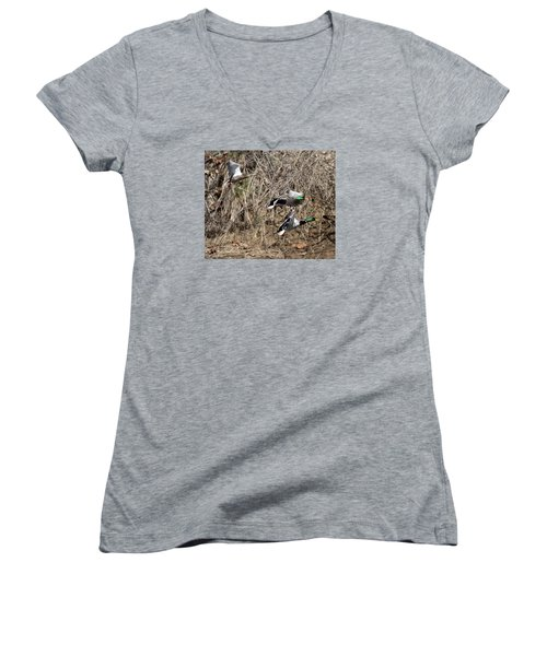 Mallard Ducks 2 Women's V-Neck T-Shirt (Junior Cut) by David Lester