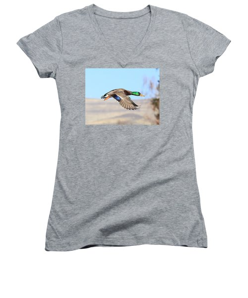 Mallard Flying Over Women's V-Neck T-Shirt (Junior Cut) by Lynn Hopwood