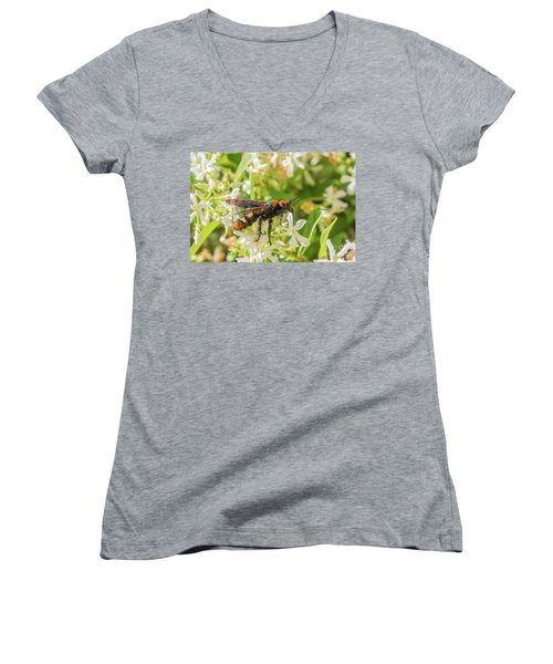 Women's V-Neck T-Shirt (Junior Cut) featuring the photograph Mammoth Wasp Megascolia Maculata Maculata by Jivko Nakev