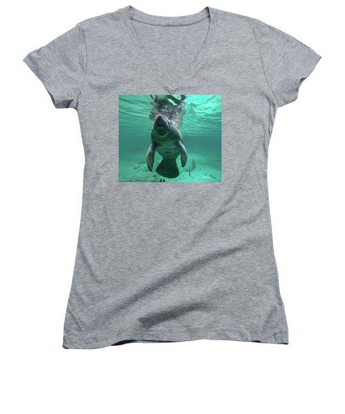 Manatee Breathing Women's V-Neck T-Shirt