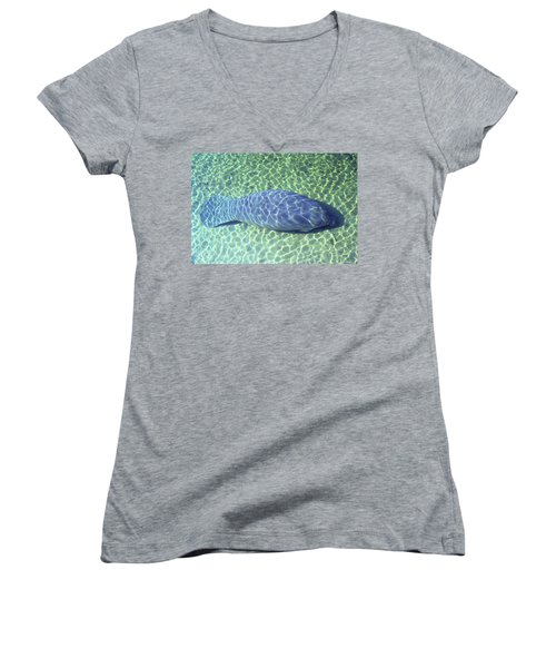 Manatee Women's V-Neck