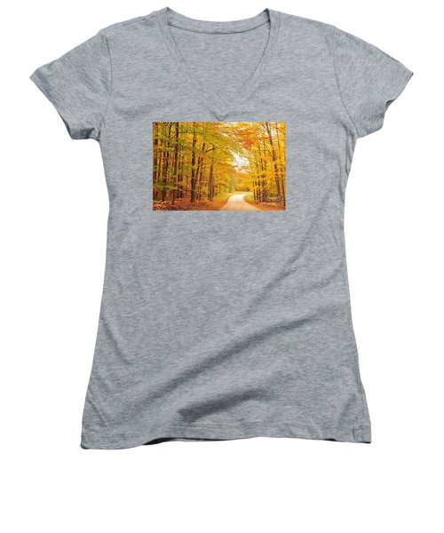 Manisee National Forest In Autumn Women's V-Neck