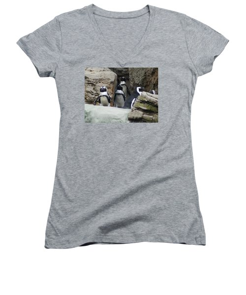 Women's V-Neck T-Shirt (Junior Cut) featuring the photograph March Of The Penguins by B Wayne Mullins