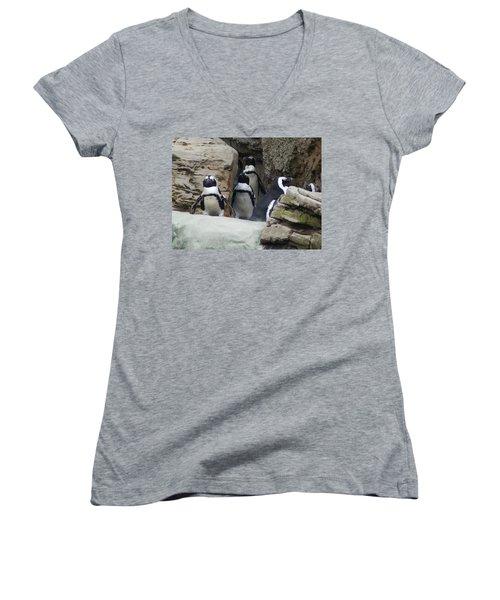 March Of The Penguins Women's V-Neck T-Shirt (Junior Cut) by B Wayne Mullins