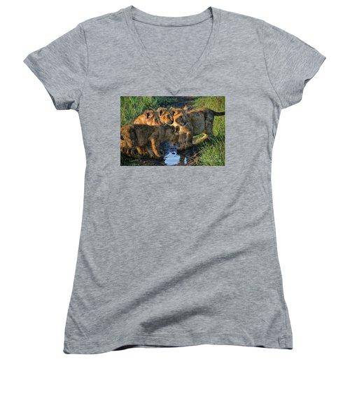 Masai Mara Lion Cubs Women's V-Neck T-Shirt (Junior Cut) by Karen Lewis
