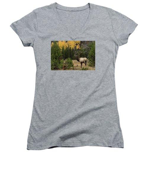 Master Women's V-Neck T-Shirt