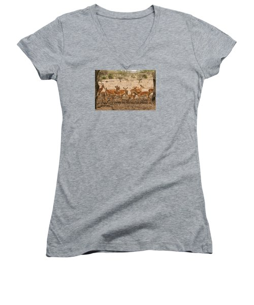 Master Of His Domain Women's V-Neck T-Shirt (Junior Cut) by Gary Hall