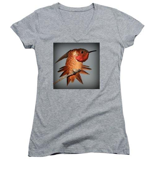 Maxwell II Women's V-Neck T-Shirt