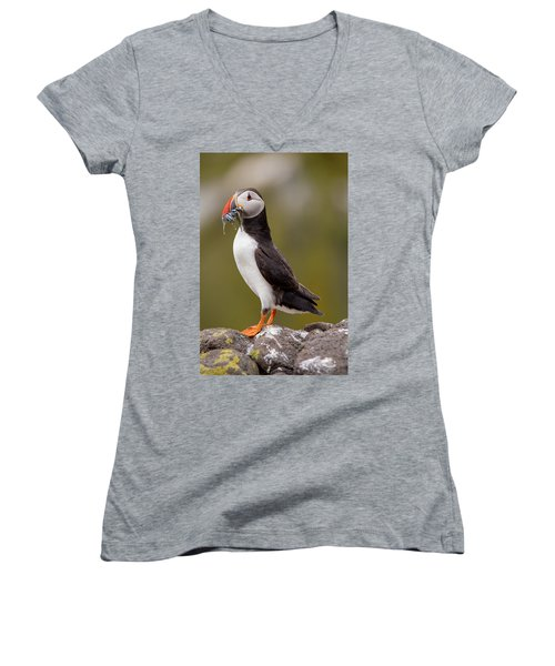 May Puffin Women's V-Neck