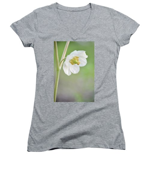 Mayapple Flower Women's V-Neck T-Shirt (Junior Cut)