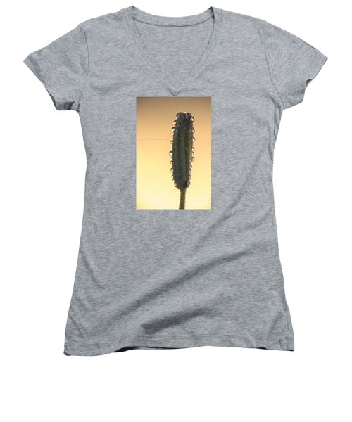 Women's V-Neck T-Shirt (Junior Cut) featuring the photograph Meadow Flower And Drops by Odon Czintos
