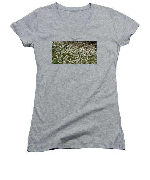 Women's V-Neck T-Shirt featuring the photograph Meadow Of Daisey Wildflowers Panorama by James BO Insogna