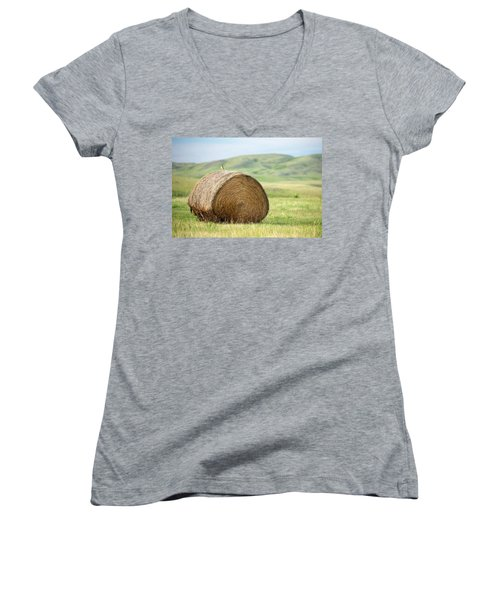 Meadowlark Heaven Women's V-Neck T-Shirt