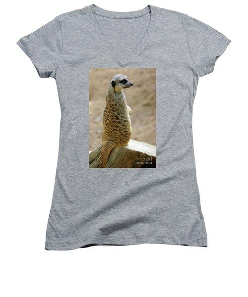 Meerkat Portrait Women's V-Neck T-Shirt (Junior Cut) by Carlos Caetano