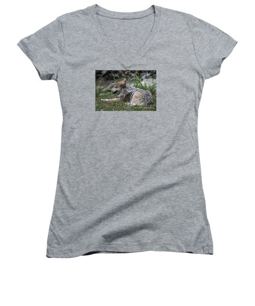 Women's V-Neck T-Shirt (Junior Cut) featuring the photograph Mexican Wolf 20120714_112a by Tina Hopkins