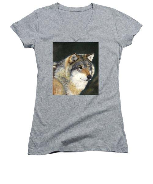 Midwinter Sunrise Women's V-Neck T-Shirt