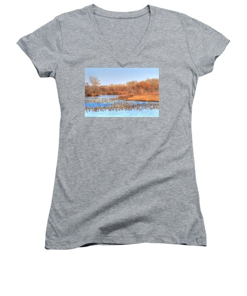 Migration Break On Ice Women's V-Neck T-Shirt