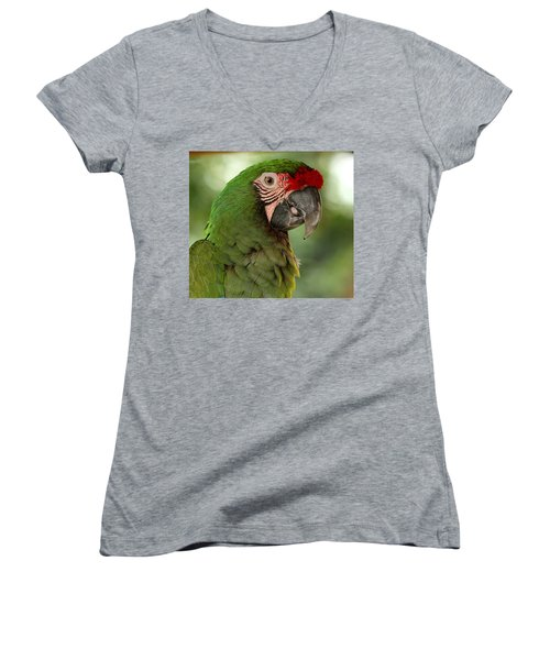 Military Macaw Women's V-Neck