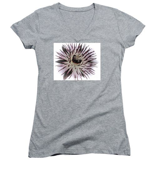 Milky Clematis Women's V-Neck T-Shirt (Junior Cut) by Stephen Melia