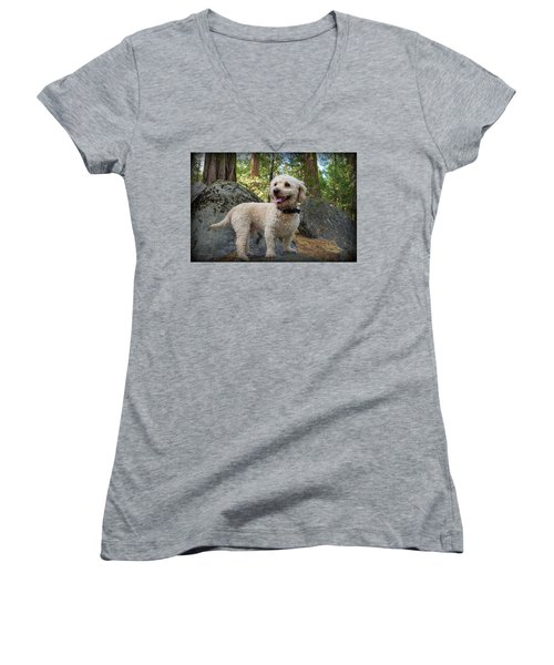 Mini Poodle Women's V-Neck T-Shirt (Junior Cut)