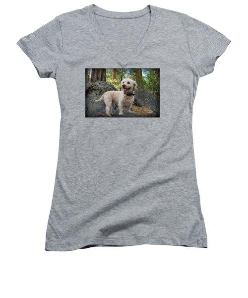 Mini Poodle Women's V-Neck (Athletic Fit)