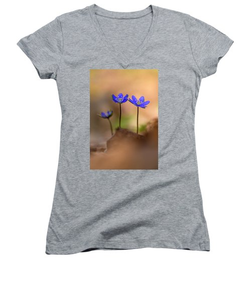 Women's V-Neck T-Shirt (Junior Cut) featuring the photograph Minimalistic Impresion With Liverworts by Jaroslaw Blaminsky