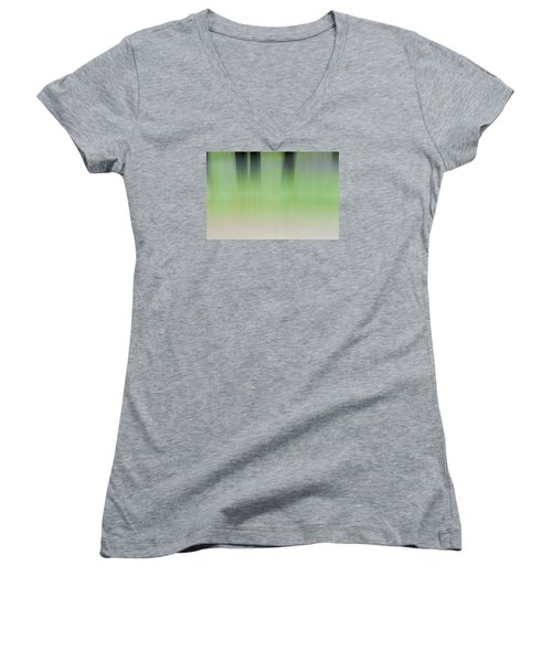 Mint Slice Women's V-Neck