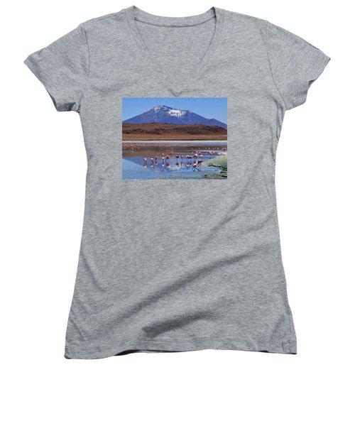 Women's V-Neck T-Shirt (Junior Cut) featuring the photograph Mirage by Skip Hunt