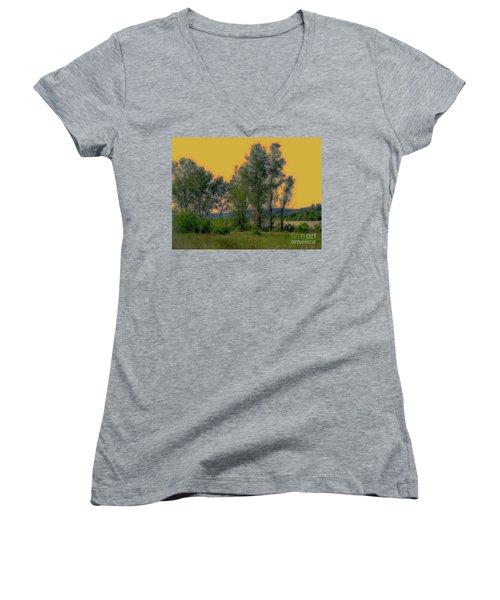 Mississippi Estuary Women's V-Neck T-Shirt