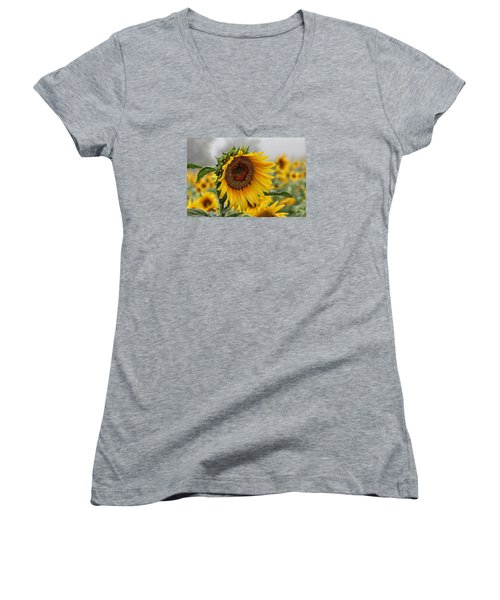 Misty Morning Sunflower Women's V-Neck T-Shirt (Junior Cut) by Karen McKenzie McAdoo