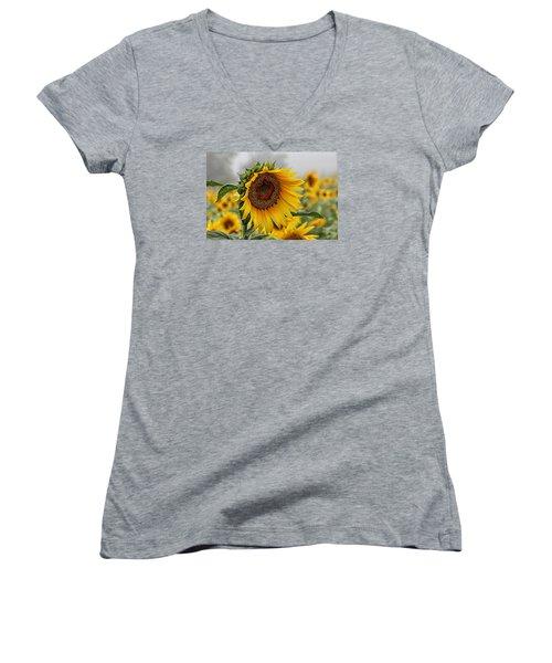 Misty Morning Sunflower Women's V-Neck T-Shirt
