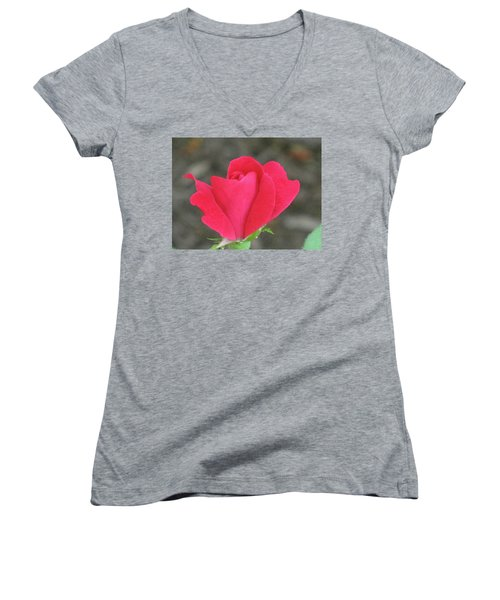 Misty Red Rose Women's V-Neck T-Shirt (Junior Cut) by Michele Wilson