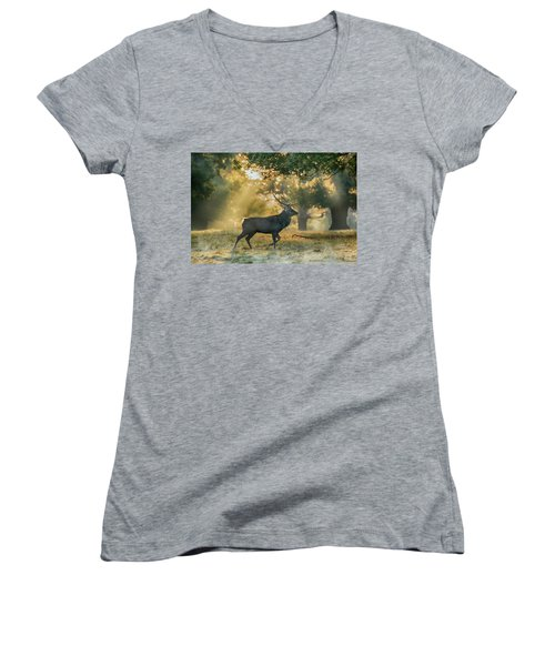 Women's V-Neck T-Shirt (Junior Cut) featuring the photograph Misty Walk by Scott Carruthers