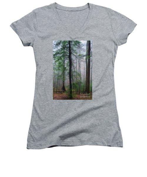 Misty Winter Forest Women's V-Neck T-Shirt (Junior Cut) by Thomas R Fletcher