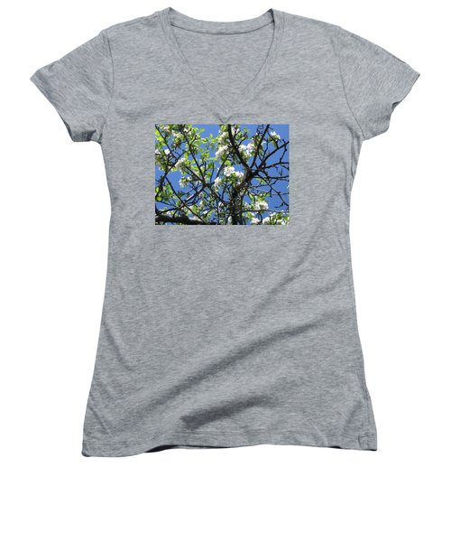 Mn Apple Blossoms Women's V-Neck T-Shirt (Junior Cut) by Barbara Yearty
