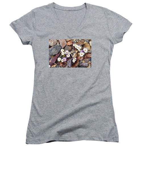 Mojave Desertstar Women's V-Neck T-Shirt (Junior Cut) by Michele Penner
