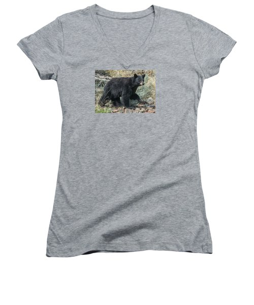 Momma Bear Walking Women's V-Neck T-Shirt (Junior Cut) by Stephen  Johnson