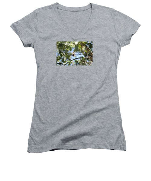 Women's V-Neck T-Shirt (Junior Cut) featuring the photograph Mommy Watching Babies by Debra     Vatalaro