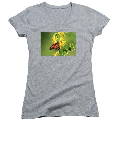 Monarch Butterfly Women's V-Neck T-Shirt (Junior Cut) by Gary Hall