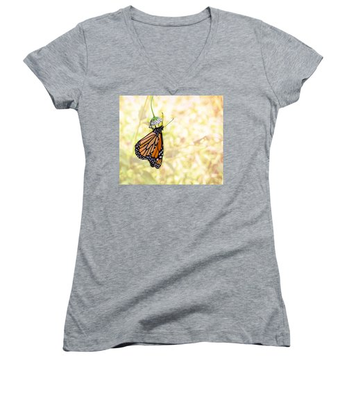 Monarch Butterfly Hanging On Wildflower Women's V-Neck T-Shirt
