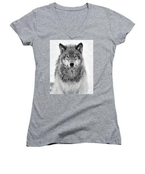 Monotone Timber Wolf  Women's V-Neck T-Shirt (Junior Cut) by Tony Beck