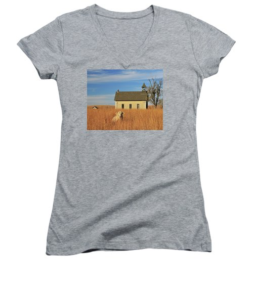 Moo's That? Women's V-Neck T-Shirt (Junior Cut) by Christopher McKenzie