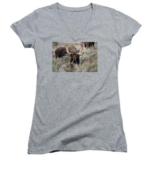 Moose In The Sage Women's V-Neck
