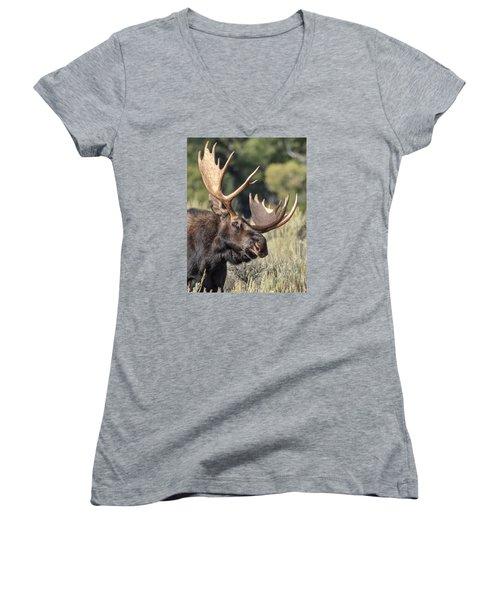 Moose Women's V-Neck T-Shirt (Junior Cut) by John Gilbert