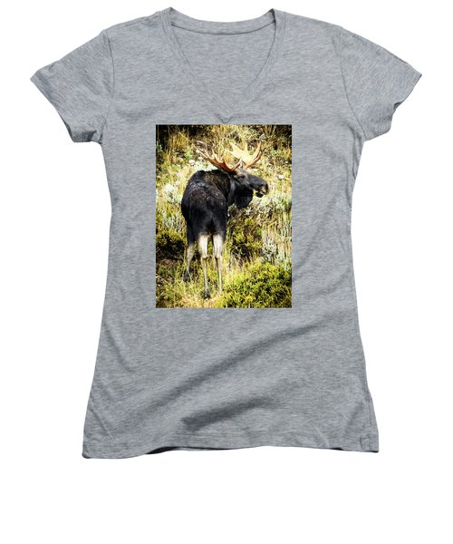 Moose Women's V-Neck (Athletic Fit)