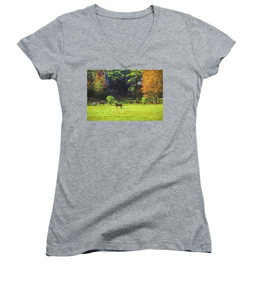 Morgan Horses In Autumn Pasture Women's V-Neck