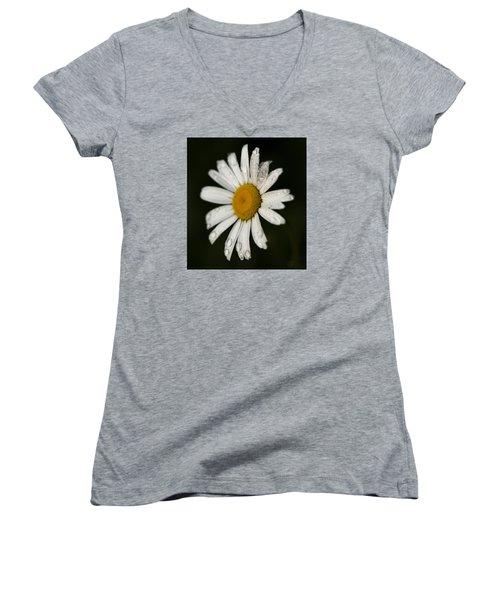 Morning Daisy Women's V-Neck T-Shirt (Junior Cut) by Dan Hefle