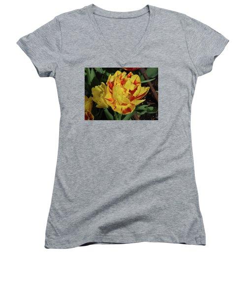 Morning Dew Drops Women's V-Neck T-Shirt