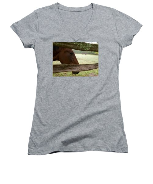 Morning Greeting Women's V-Neck T-Shirt